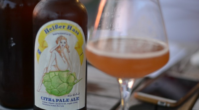 """<span class=""""entry-title-primary"""">Mission Citra Pale Ale – Teil 3</span> <span class=""""entry-subtitle"""">Das Finale</span>"""